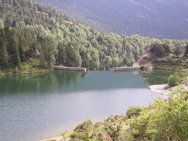 Barrage: pêche de la carpe interdite