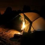 Pêche de la carpe de nuit