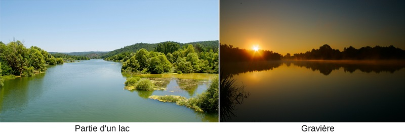 Habitats lac graviere