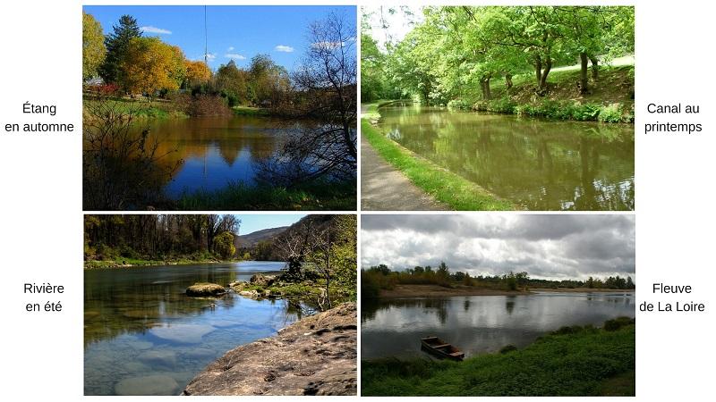 Habitats eau douce